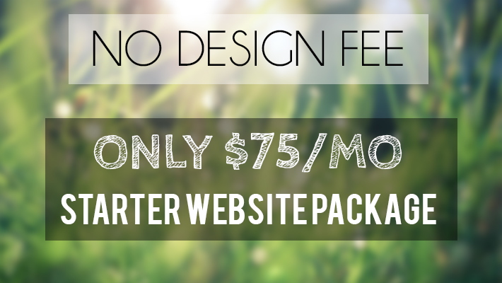 cincinnati-design-starter-website-package-1