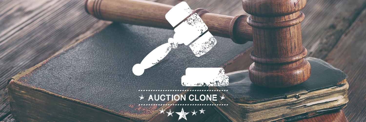 New Website For Auction Website Clients